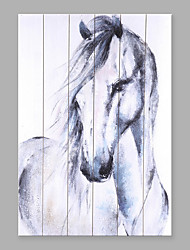 Hand-Painted Abstract Fashion Animal The Horse Five Panels Canvas Oil Painting For Home Decoration