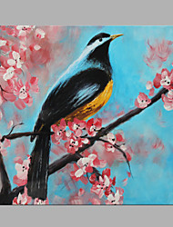 IARTS® Hand Painted Modern Abstract Long Tail Magpie Bird Oil Painting On Canvas with Stretched Frame Wall Art For Home Decoration Ready To Hang