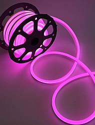 светодиодная лента неоновый свет 2м водонепроницаемый наружный ip68 120leds / m теплый белый / белый / красный / желтый eu штекер (ac220v-240v)
