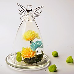 Table Centerpieces DIY Terrarium/ Angel Glass Cover   Table Deocrations (Plants Not Included)