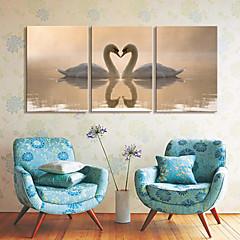 Op gespannen doek kunst Animal Swan Lovers Set van 3