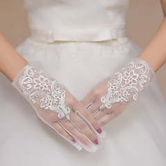 Wrist Length Fingertips Glove Lace / Tulle Bridal Gloves / Party/ Evening Gloves Ivory Embroidery