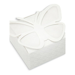 Garden Theme Butterfly Favor Boxes