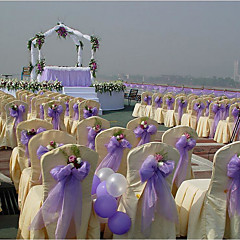 Solid Color Taśmy ślubne Każdy / Set Organza Ribbon