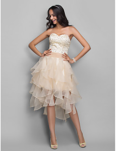 Homecoming Cocktail Party/Holiday/Homecoming Dress - Champagne Plus Sizes A-line/Princess Sweetheart Asymmetrical Organza/Stretch Satin