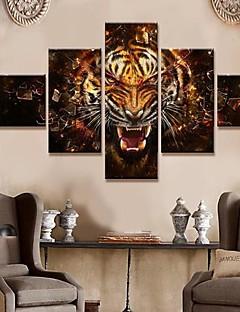 Canvas Art Animais Roar conjunto de 5