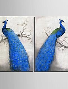 sträckt arbetsytan konst blå påfågel dekoration målning set om 2