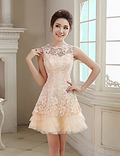 Homecoming Cocktail Party Dress - Ruby A-line Jewel Short/Mini Lace/Tulle