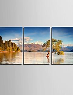 e-Home® gespannen doek zijt het meer landschap decoratie schilderij set van 3