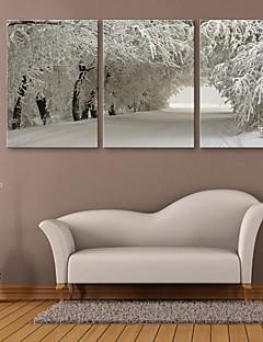 e-Home® strakt lærred kunst sne scene dekoration maleri sæt af 3