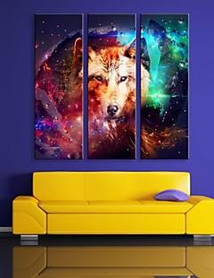e-Home® allungata guidata arte canvas stampa l'effetto del flash lupo infiammante set di stampa in fibra ottica di 3