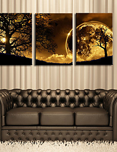 E-HOME® Stretched Canvas Art Dusk Under The Tree Decorative Painting Set of 3