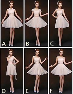 Short / Mini Mix & Match Sets / Lace-up Bridesmaid Dress - Sheath / Column Halter / One Shoulder / Sweetheart / Straps with Sash / Ribbon