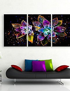 e-Home® uitgerekt geleid canvas art heldere bloemen LED knippert glasvezel afdruk set van 3