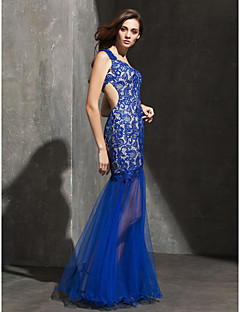 Formal Evening Dress - Royal Blue Plus Sizes / Petite Fit & Flare Sweetheart Floor-length Lace / Tulle