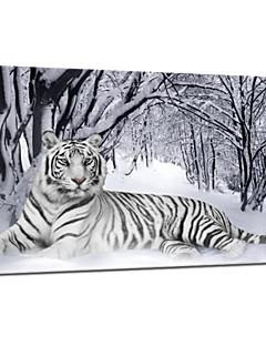 visuelle star®tiger animale neige art de la peinture de toile d'hiver d'impression de toile tendue