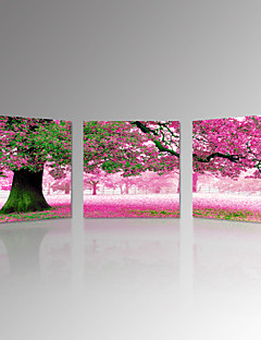 VISUAL STAR®Pink With Memory Romantic Tree Stretched Canvas Prints Landscape Photo Art Prints Canvas Set of 3