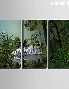 e-FOYER toile tendue art tigre et le perroquet blanc peinture décoration ensemble de 3