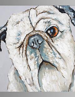 Animal Toile Un Panneau Prêt à accrocher , Carré
