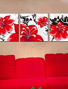 Stretched Canvas Oil Painting Flower Home Decorative Pictures 60*60CM*3PCS