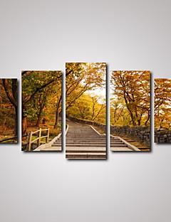 Canvas Set Landschap Klassiek Modern,Vijf panelen Horizontaal Print Art Muurdecoratie For Huisdecoratie