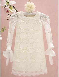 Lanting nevěstu ® plášť / sloupec ke kolenům květin šaty - krajka dlouhý rukáv šperk s krajkou
