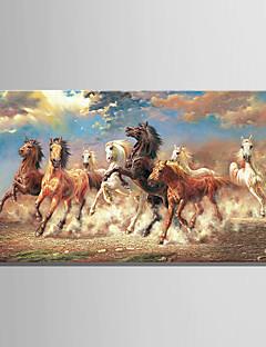 grande taille 8 fonctionnement peinture à l'huile cheval animal sur toile 3d image d'impression cadre whit un panneau prêt à accrocher