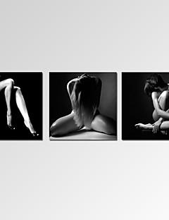Abstrakti / Fantasy / Leisure / Landscape / Valokuvaus / Moderni / Romantiikka / Pop Art Canvas Tulosta 3 paneeli Valmis Hang,Horizontal