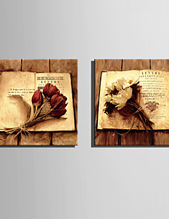 E-HOME® Stretched Canvas Art A Bunch Of Flowers On The Page Decoration Painting  Set of 2