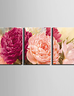 E-HOME® Stretched Canvas Art Bright Peony Flower Decoration Painting  Set of 3
