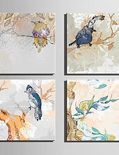 Animali / Botanical Print Canvas Quattro Pannelli Pronto da appendere , Quadrato