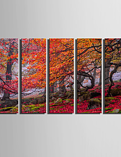 Landschaft / Botanisch Leinwand drucken Fünf Panele Fertig zum Aufhängen , Vertikal