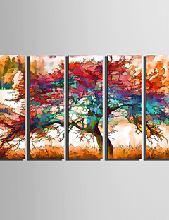 E-HOME® Stretched Canvas Art Colorful Tree Decorative Painting Set of 5