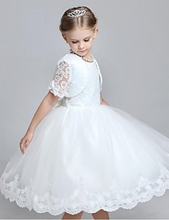 Short Sleeve, Flower Girl Dresses, Search LightInTheBox