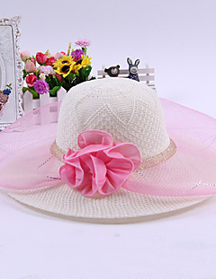 Women's Mesh Straw  Floral Summer Or Spring Simple Sun Hat