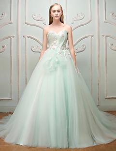 Prinsessa kultaseni lakaisu / harja juna tulle harjoitteluun iltapuku mekon kanssa