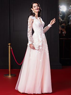 TS couture® 공식적인 저녁 아플리케 / 레이스와 라인 V 넥 바닥 길이 쉬폰 / 얇은 명주 그물 드레스