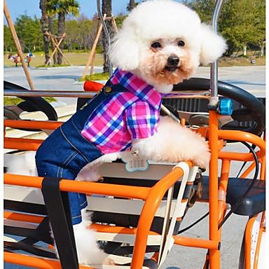 Buy Dog Shirt / T-Shirt Pants Clothes/Clothing Green Rose Summer Jeans
