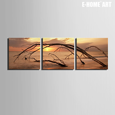 Buy E-HOME® Stretched Canvas Art Dead Sea Decorative Painting Set 3