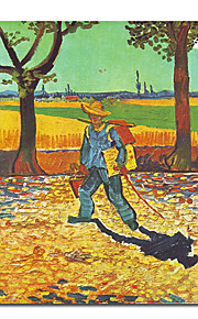 Hand-painted Oil Painting by Vincent Van Gogh with Stretched Frame