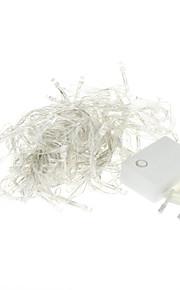 10M 100-LED 3000K varm hvit lys LED stripe lys (220V)