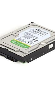 """Western Digital Caviar Green SATA 3.5 """"1TB harddisk 64MB egnet til sikkerhedssystemer"""