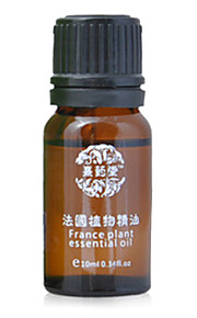 xiyaotang®hair omsorg eterisk olje (en flaske)