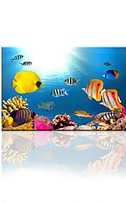 예술 물고기 벽에 사진을 인쇄 캔버스 시각 star®ocean 세계가 응답 할 준비가 예술