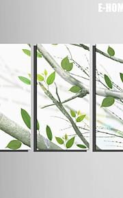 e-home® strukket lerret kunst på treets blader dekorasjon maleri sett med 3