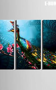 전자 home® 캔버스는 공작 3의 꽃 장식 그림 세트 예술 뻗어