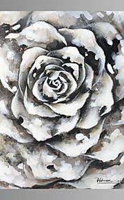 Still Life / fantasi / fritid / Botanisk / Moderne Lerret Print Et panel Klar til å henge , Kvadrat