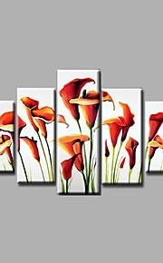 listo para colgar estirada pared de lona pintura al óleo de naranja del arte pintado a mano enmarcada Lirio rojo blanco cinco paneles