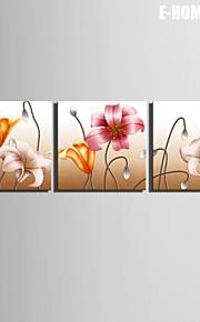 Botanisch Canvas Afdrukken Drie panelen Klaar te hangen , Vierkant