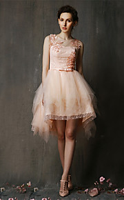 Asymmetrical Lace / Tulle Bridesmaid Dress-Blushing Pink / Champagne A-line Jewel